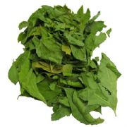 Curry Leaves (Neem)